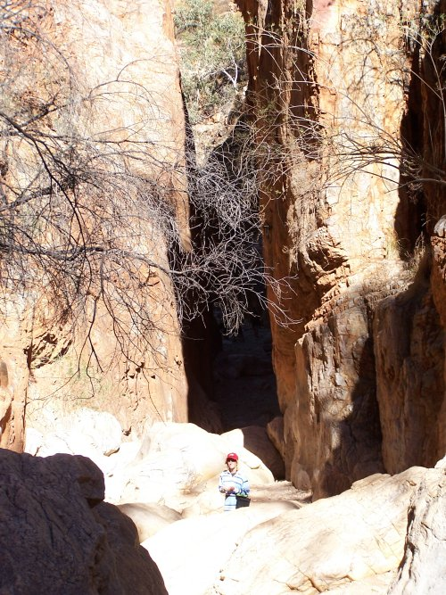 how to get to standley chasm from alice springs